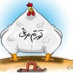 کاریکاتورهایی جالب در مورد گرانی مرغ