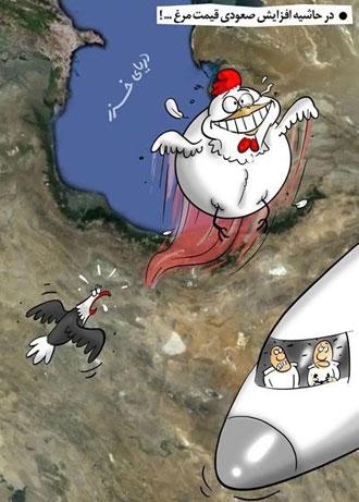 کاریکاتور گوشت مرغ