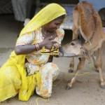 عکس هایی زیبا از زندگی حیوانات با انسان