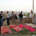 بهرام رادان برای مردم زلزله زده پیام داد