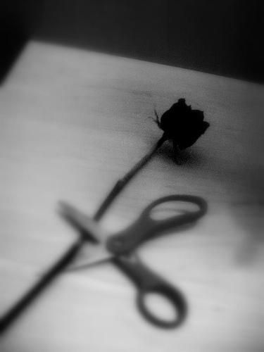 اس ام اس جدید تنهایی و تنها بودن