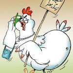 کاریکاتورهای خنده دار گرانی مرغ (سری2)
