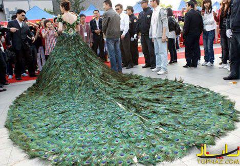 لباس پر طاووس