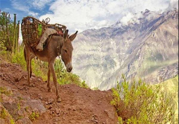 دره پرو