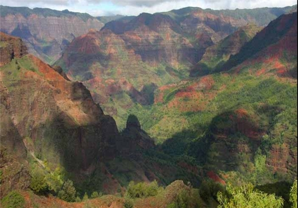 دره هاوایی
