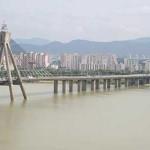 عشاق در کره جنوبی اینجا خودکشی می کنند+عکس