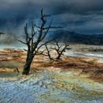 عکس های زیبا از پارک جنگی یلوستون (سری1)