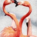به اینا میگن عاشق واقعی! +تصاویر