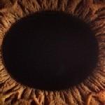 به نظرتان چشم انسان چند مگاپیکسل است؟
