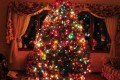 نحوه تزیین درخت کریسمس 2013
