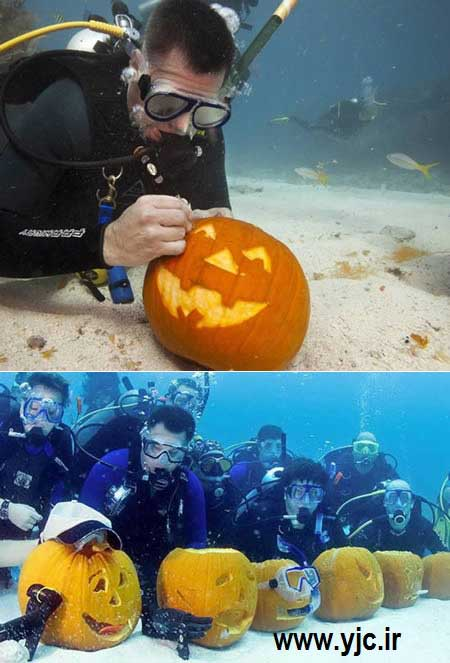 عجایب زیر آب