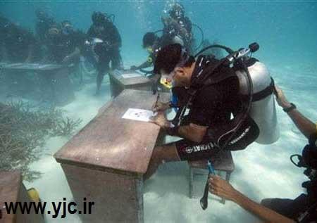 دنیای زیر آب , عجایب زیر آب