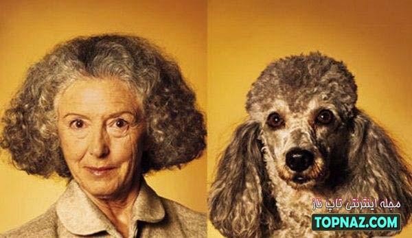 سگ موفرفری