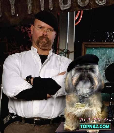 سگ پروفسور