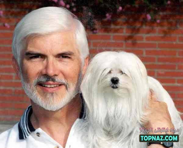 سگ و انسان