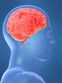 10 نکته عجیب در مورد مغز انسان