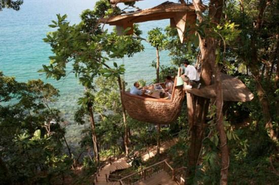 رستوران درختی