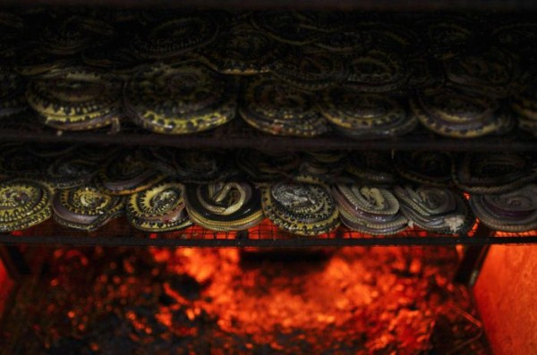 1135 Production of Snakeskin Handbags (22 photos)