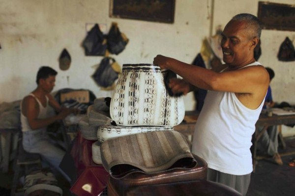 2117 Production of Snakeskin Handbags (22 photos)