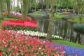 7 باغ فوق العاده زیبا در دنیا +عکس