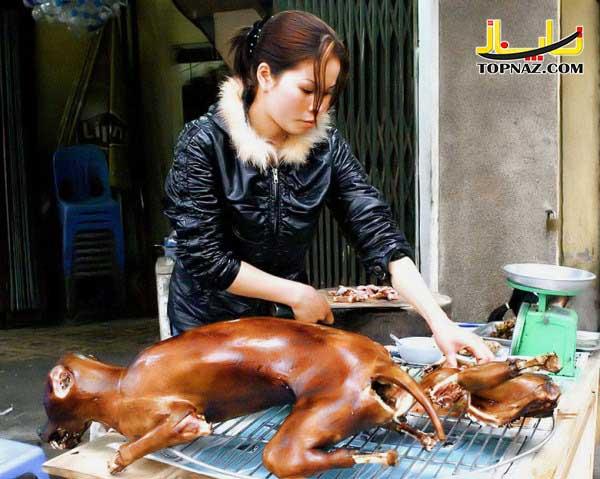 خورک سگ در چین