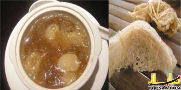 این یه مورد خیلی خنده داره : سوپ لانه پرندگان