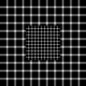 عکس خطای دید