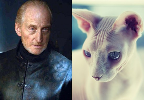 Game-Of-Thrones-Characters-as-Cats-7-550x380
