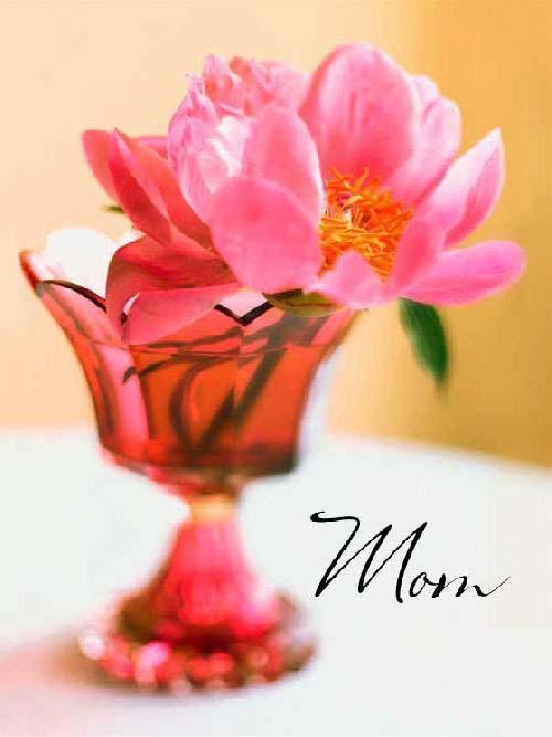 عکس نوشته تبریک روز مادر