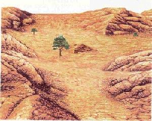 قتل هابیل و حضرت آدم