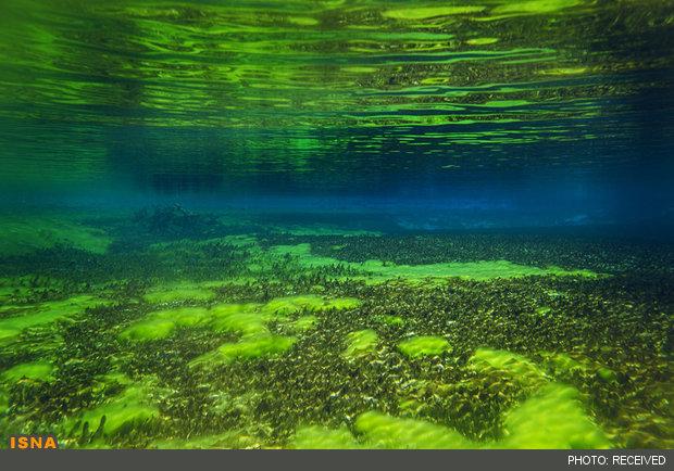 دریاچه زلال