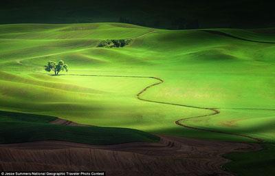 عکسهای برگزیده نشنال جئوگرافیک