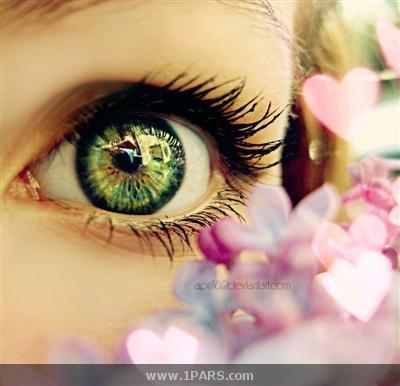 دانستنی در مورد چشم