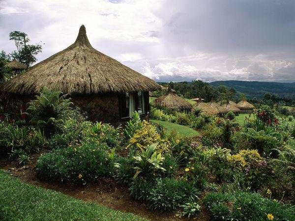 کشور پاپوآ گینه نو