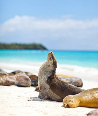 زیباترین جزیره های گردشگری دنیا