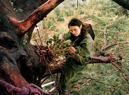 این دختر 2 سال روی درخت زندگی کرده است!! +عکس