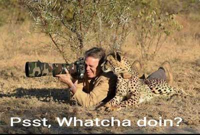 عکس های بامزه و خنده دار