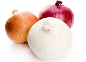 کاهش وزن, پیاز موثر در کاهش وزن, رژیم غذایی مناسب