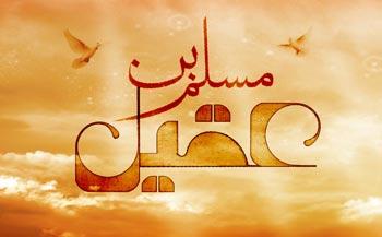 مسلم بن عقیل(ع),زندگی نامه مسلم بن عقیل(ع),شهادت مسلم بن عقیل(ع)