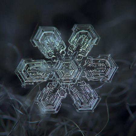 عکس های دیدنی از دانه های برف