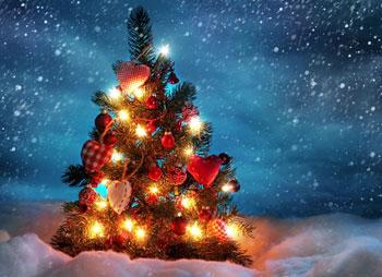 شعر زیبای کریسمس
