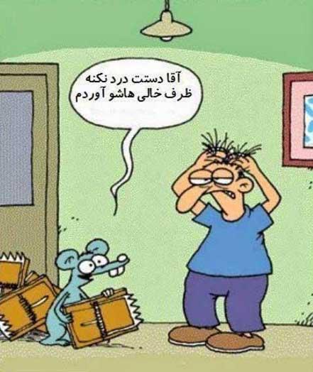 عکس های بامزه و خنده دار, کاریکاتور