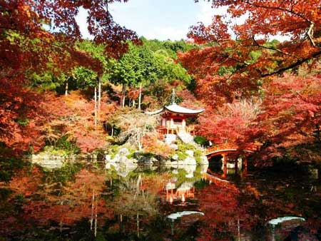 10 شهر برتر آسیا,شهر های برتر گردشگری در سال  در 2014