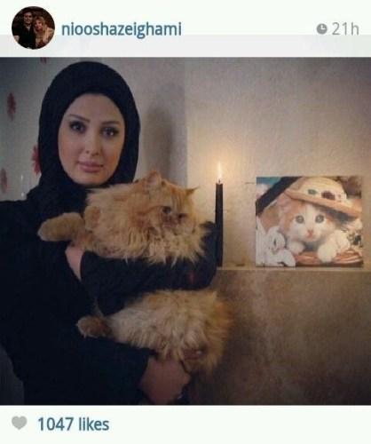 عکس نیوشا ضیغمی گربه اش