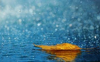 باران اسیدی چیست؟