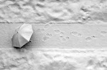 شعر زیبا در مورد برف