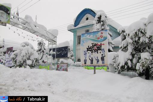 عکس های دیدنی از برف سنگین در تنکابن