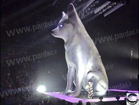 گریه های بی امان مایلی سایرس برای سگش! +عکس