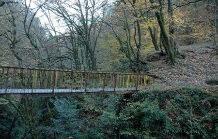 بزرگ ترین پارکهای جنگلی ایران,پارکهای جنگلی ایران