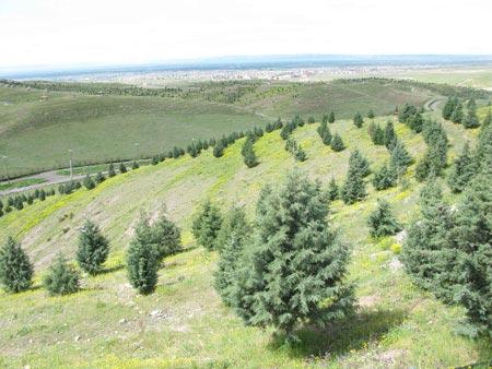 پارکهای جنگلی ایران